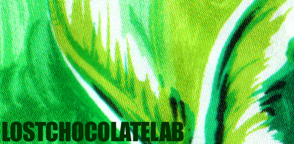 Lost Chocolate Blog